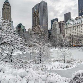 NEW YORK I LOVE BILBAO