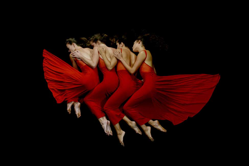 momix forever